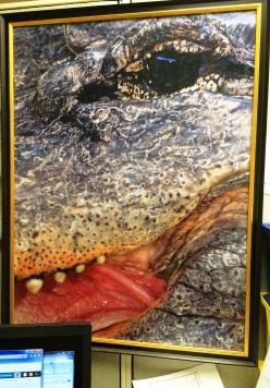 Gator Poster 001