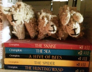 3 sheep on books