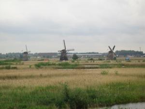 Holland 107